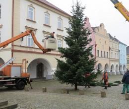 Nové Město nad Metují už má svůj vánoční strom
