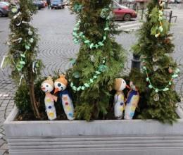 Květníky na náchodském náměstí opět vítají Vánoce